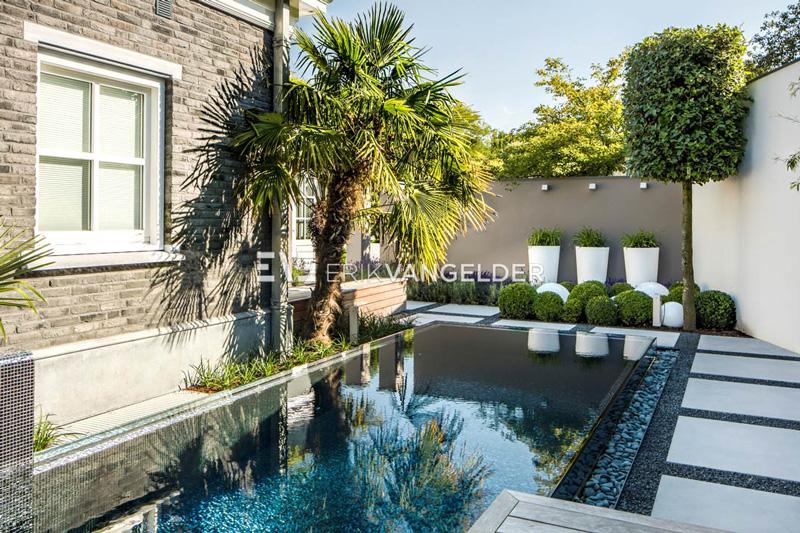 Deze exclusieve tuin is voorzien van een zwembad.