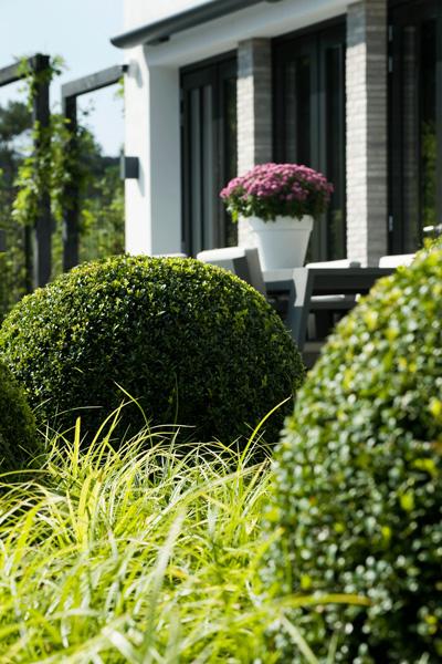 Wolkentuin Heart For Gardens The Art Of Living Nl