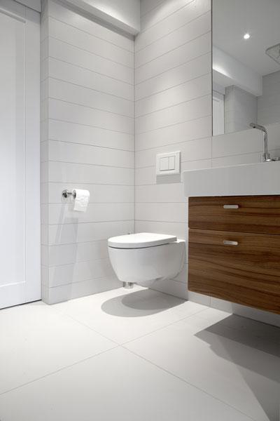 Badkamer, wastafel, toilet, sanitair, verrassende renovatie, Denoldervleugels