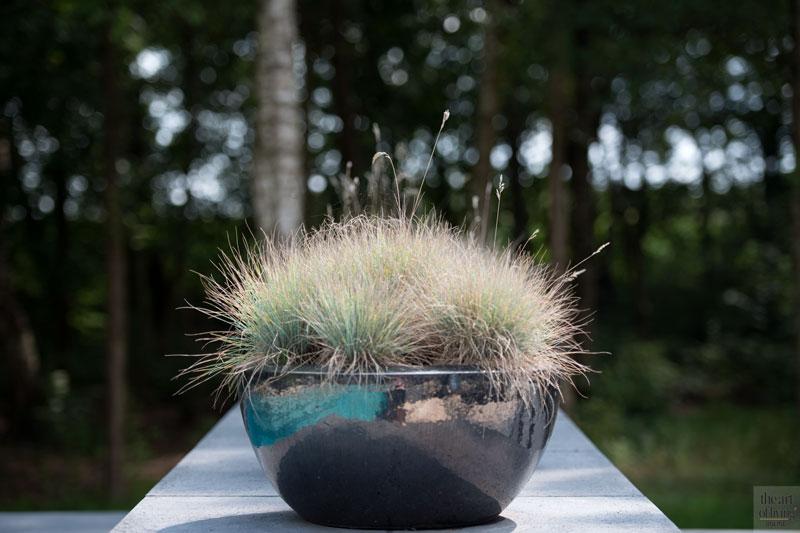 Beplanting, Boomkwekerij Ebben, tuin, planten, wellnesstuin, Studio REDD