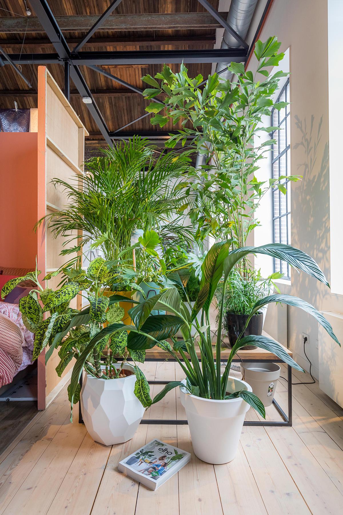 Blomus, Home Comfort Press inspiratie dagen, interieur inspiratie, blog sarah watts
