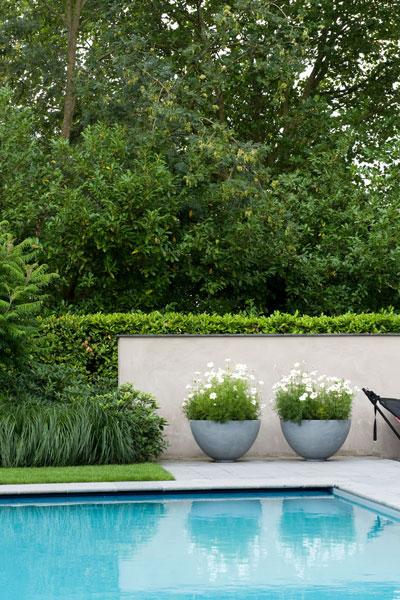 zwembad in tuin, zwembadtuin, zwembad tuin, jaap sterk, tuinaanleg, the art of living, zwembad, zwembad aanleggen