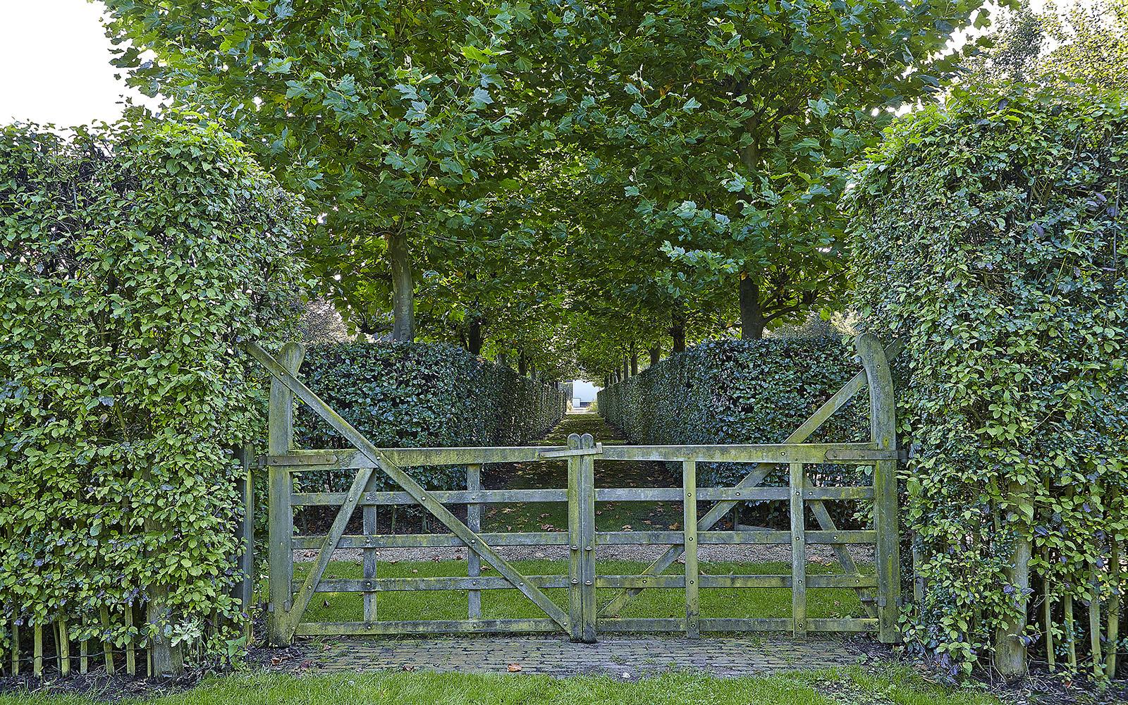 Imposante tuin, Margry-Arts Architecten, Margry Arts, Tuin, Landschapstuin, Vijver, Zwembad, Vakantiegevoel