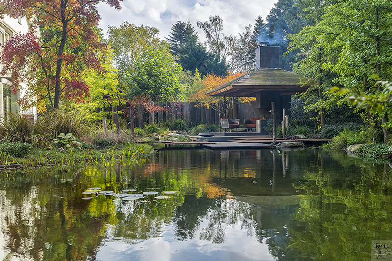 Japanse tuin, Van Mierlo Tuinen, Groene tuin, vijver