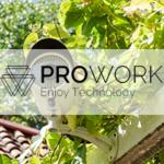 Een veilig huis, Prowork, the art of living