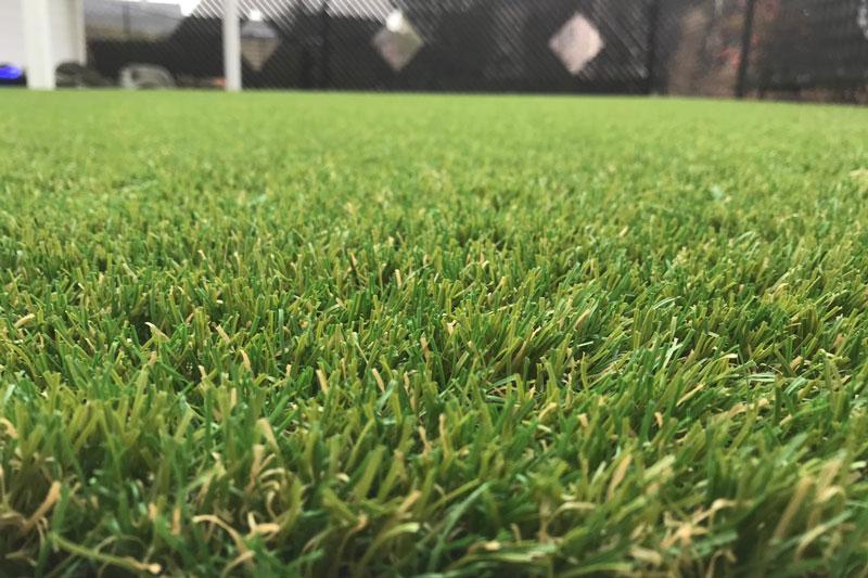 Royal Grass, kunstgras kleur, kunstgras
