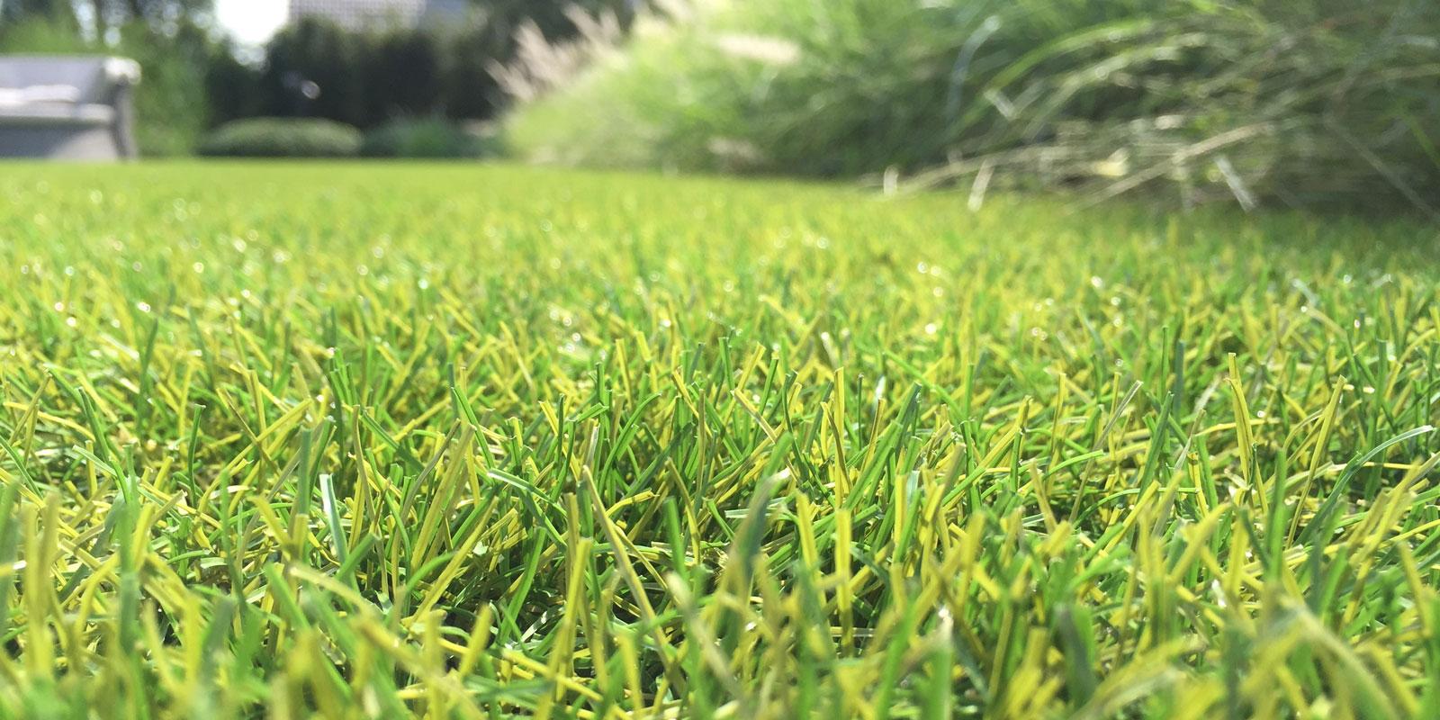 Kunstgrasvezels, Royal Grass, Kwaliteit, ReaDY Technologie, groeirichting