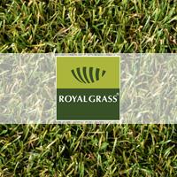 Royal Grass, kunstgras, kleur kunstgras