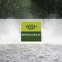 Voordelen van kunstgras, Royal Grass, waterbesparing, onderhoud, Rioolbelasting