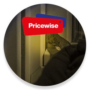 Huis beveiligen, Pricewise, Alamsystemen, Kernbeslag op sloten, Inbrekers, beveiligingscamera