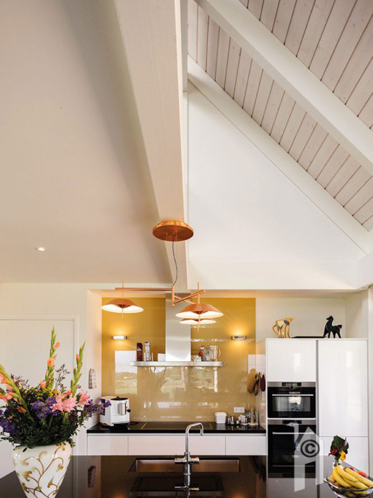 schuurwoning, finnhouse, glazen gevel, houtbouw, modern