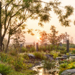 Natuurtuin, sfeervol, waterloop, Van Mierlo Tuinen