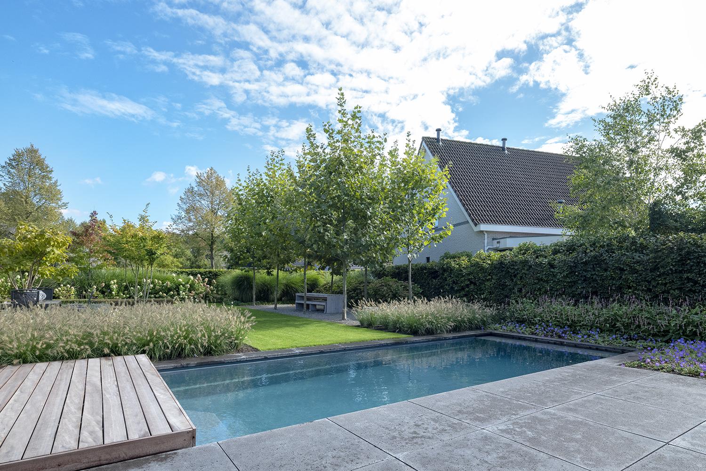Zwembad in eigen tuin | Compass Pools, the art of living
