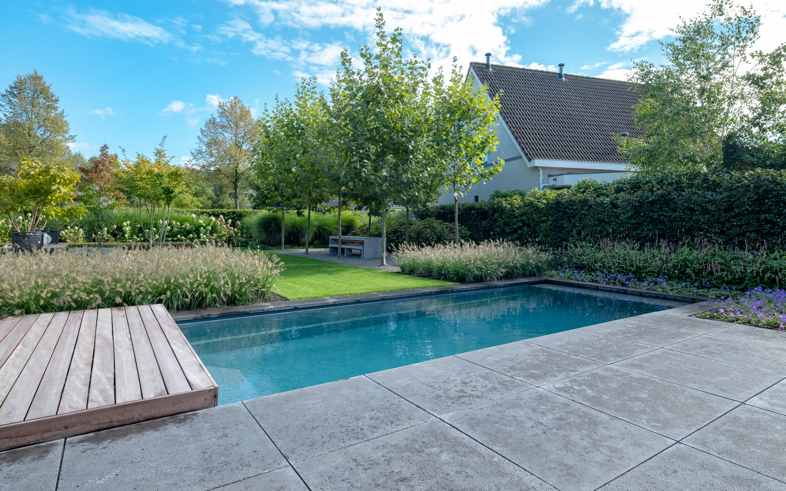 compass pools, the art of living